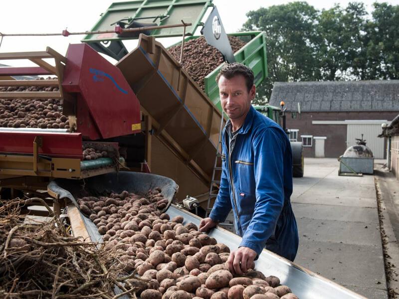 Pieter van Boerderij Chips